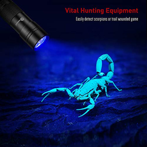 Image of Blacklight Flashlights - AVM
