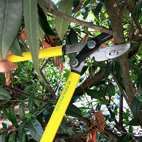 Small and Sharp Anvil Pruning Loppers - AVM