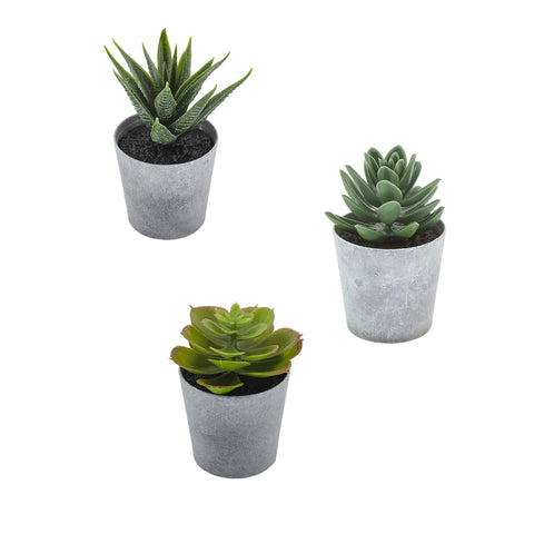 Artificial Succulents set of 3 mini Realistic Fake Plants - AVM