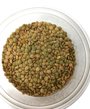 Whole Lentils, natural and contain easily digestible protein, (ድፍን ምስር)