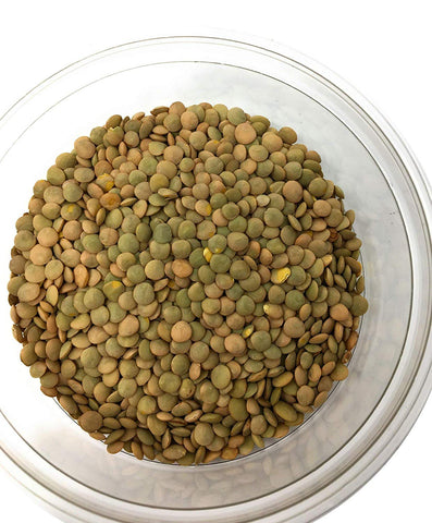 Image of Whole Lentils, natural and contain easily digestible protein, (ድፍን ምስር) - AVM