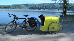 CycleTote Bicycle Trailers for Children, Disabled Teens, Dogs