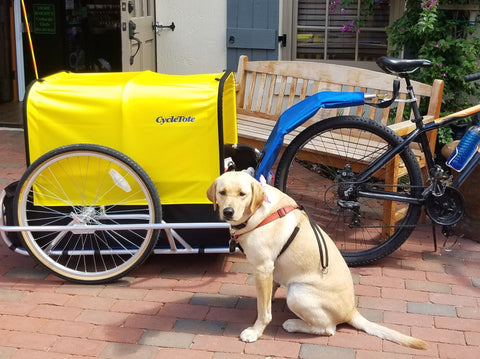 CycleTote Dog Trailer for a Bicycle