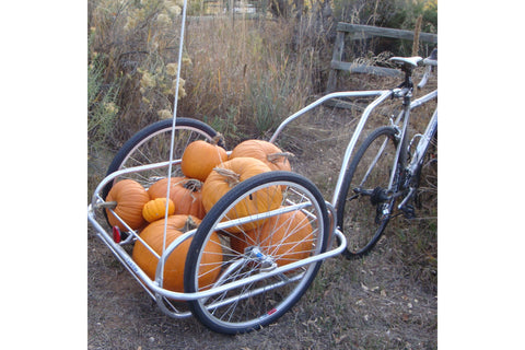 Utility Small Bicycle Trailer: Holds 100 lbs.
