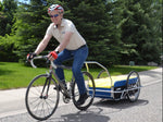 Cargo Trailer - Large in Blue/Yellow/Black