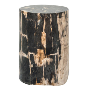 Petrified wood tree stump.  Perfect as a pedestal or side table