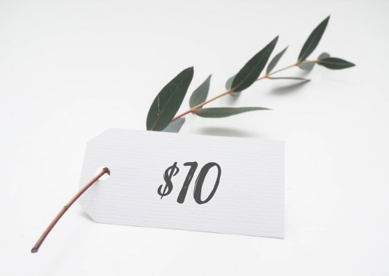 Ecostainable $10 Gift Card