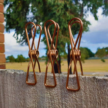 Rose Gold Stainless Steel 'Infinity' Pegs large on fence