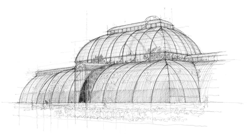 Palm house sketch by Luke Adam Hawker