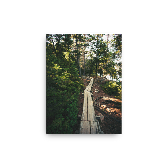 The Path Along Jordan Pond, Acadia (canvas artwork)
