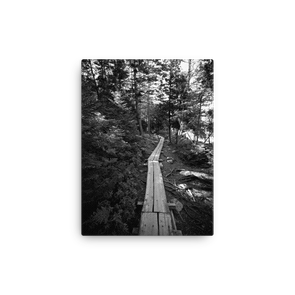 The Path Along Jordan Pond, Acadia (b&w canvas artwork)