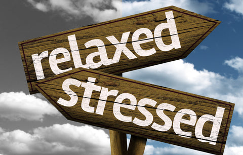 Stressed Relaxed