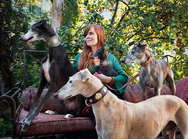 Klea Levin in The Guardian: Galgo rescue advocate