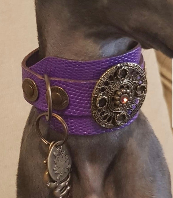 Basic Crystallized Italian Greyhound Collar - BARCELONADOGS