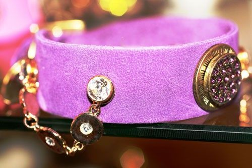 Legend Dog Collar - BARCELONADOGS