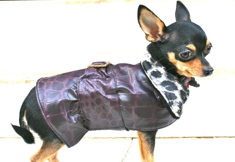 Rainy Coat in Plum for Toy Breeds - BARCELONADOGS
