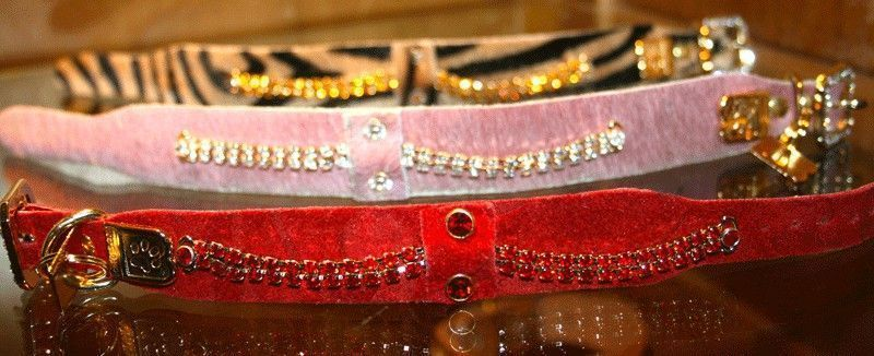 Serendipity Dog Collar - BARCELONADOGS