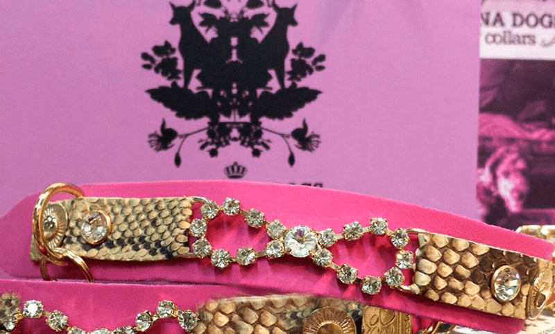 Tribal Rosette Snake Dog Collar - BARCELONADOGS