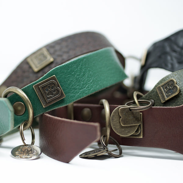 PLAIN LEATHER DOG COLLAR SET - BARCELONADOGS