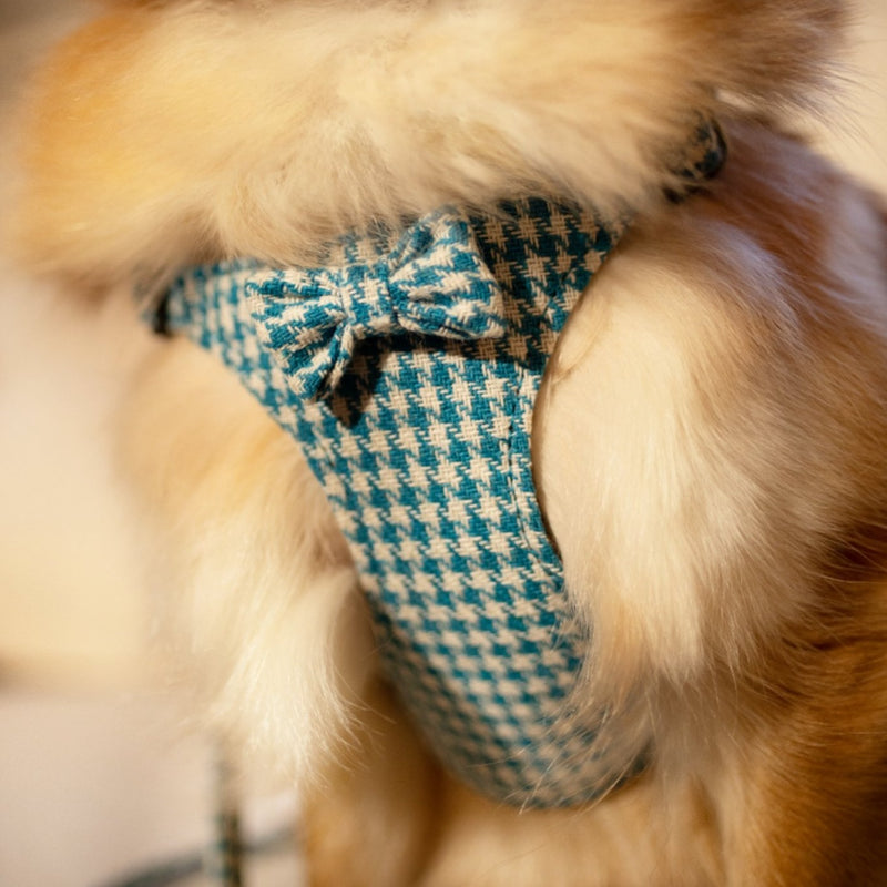 LUXURY Turquoise Pepita Harness