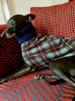 Rhombus Dog Coat - BARCELONADOGS
