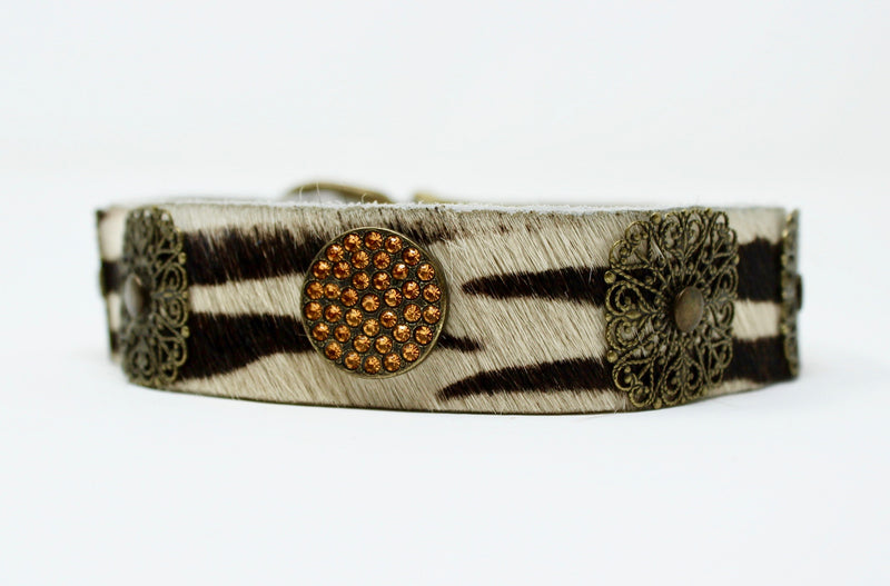 Zebra Filigree Dog Collar