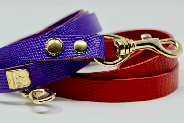 MATCHING LEASH REDUCED PRICE when you buy together with DOG COLLAR - BARCELONADOGS