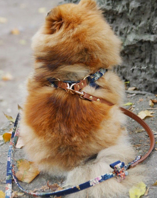 Leash for Luxury Harness - BARCELONADOGS