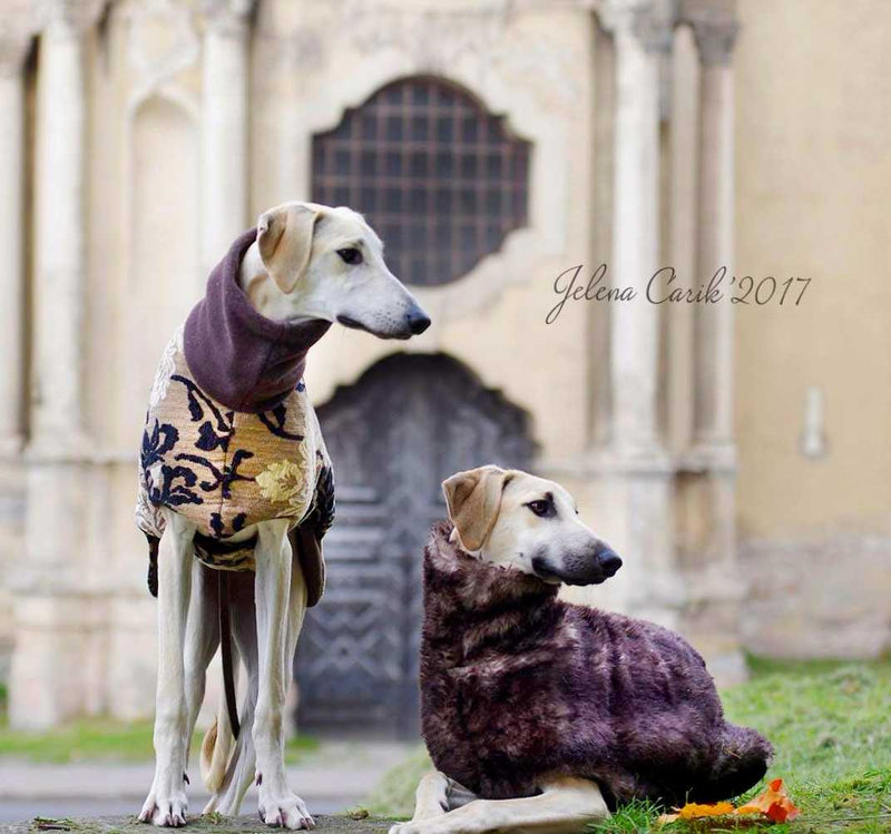 Faux Fur Sighthound Coat - BARCELONADOGS