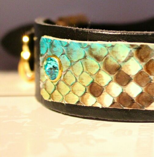 Black Swan Dog Collar