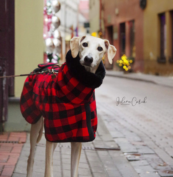 Red Black Buffalo Plaid Sighthound Coat