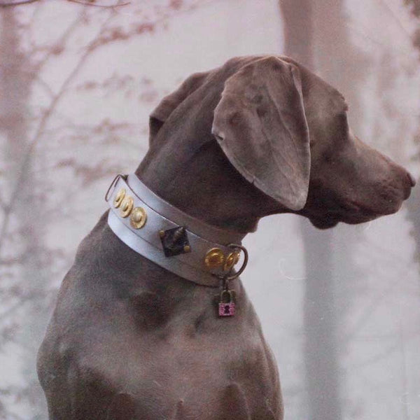 Buddha Silver Dog Collar - BARCELONADOGS