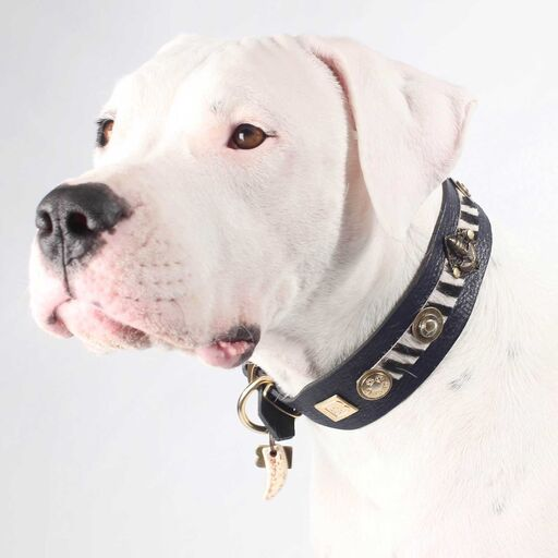 Buddha Salvaje Dog Collar - BARCELONADOGS