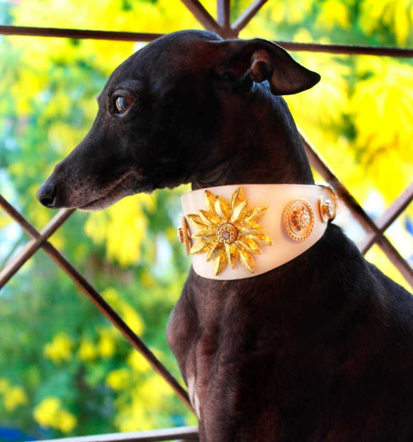 Wild Empress Crystallized Sighthound Collar - BARCELONADOGS