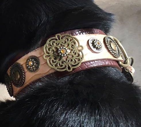 Esparta Dog Collar