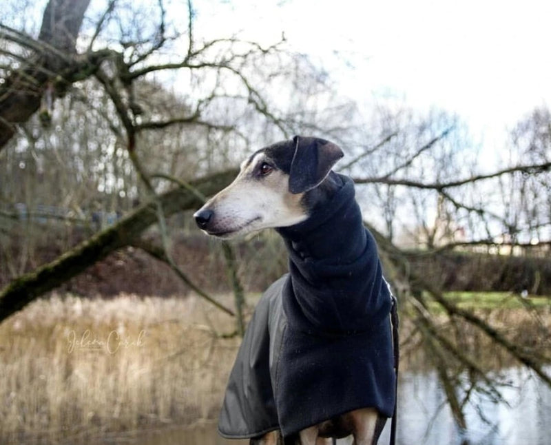Black Waterproof Urban Coat - BARCELONADOGS