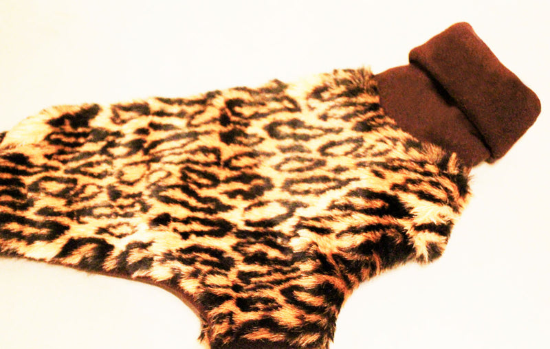 XS Winter Coat Leopard/Zorro Italian Greyhound