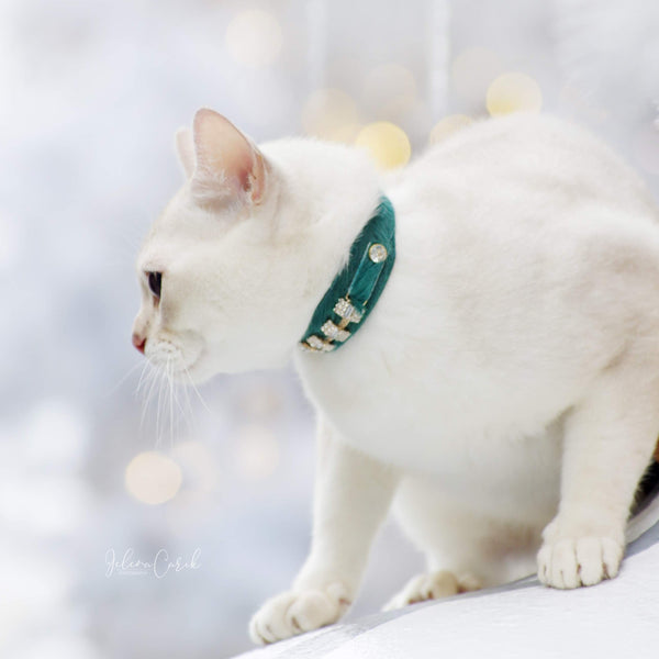 Petit Blanche Cat Collar