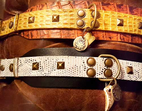 Studded Dog Collar - BARCELONADOGS