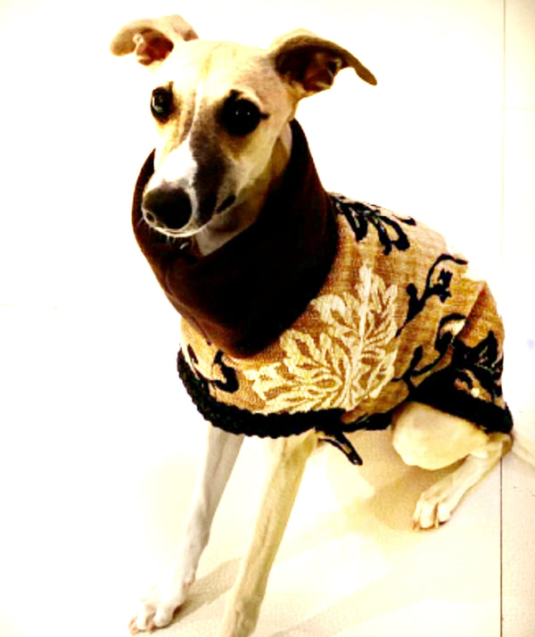 Haute Couture Brocade Dog Coat