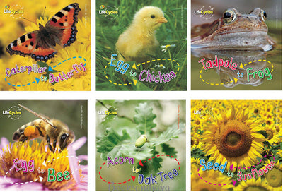 LifeCycles: Caterpillar to Butterfly, Egg to Chicken, Tadpole to Frog, Egg to Bee, Acorn to Oak Tree... by Camilla de la Bedoyere (6 Paperback Book Set)
