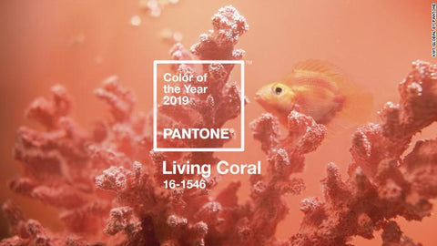 "Pantone declares ""Living Coral"" the color of the year for 2019"
