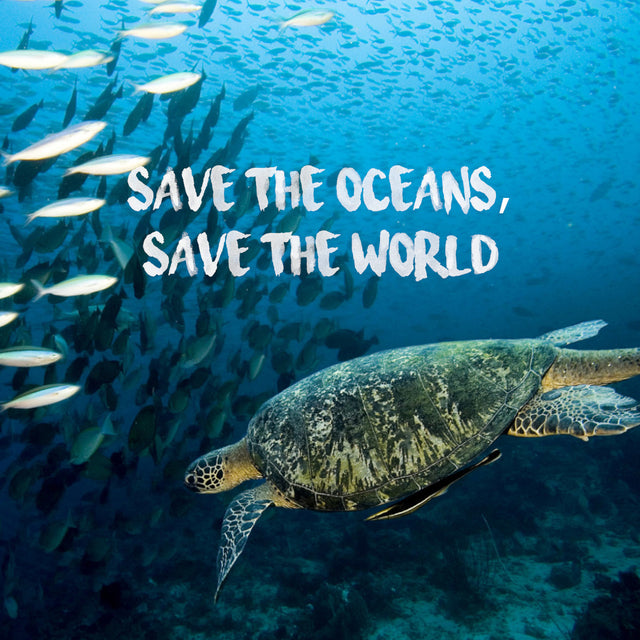 Save the oceans, save the world