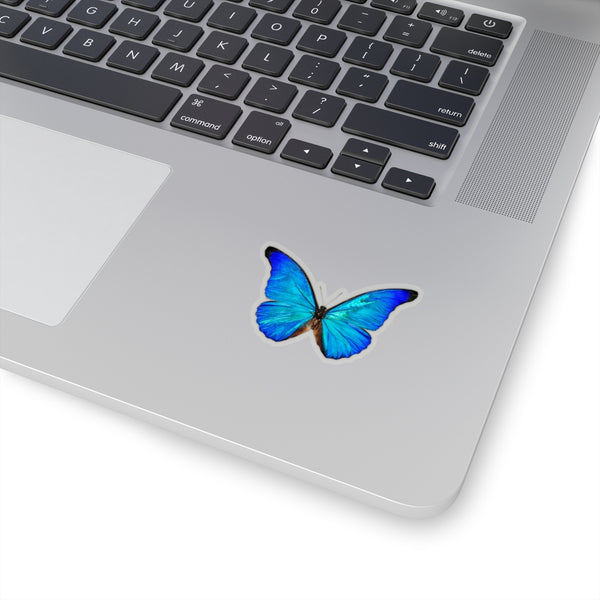Blue Butterfly Sticker, Morpho Anaxibia Realistic Stickers Laptop Vinyl Cute Water bottle Car Label Girl Wall Phone Mural Decal Die Cut - Starcove Design