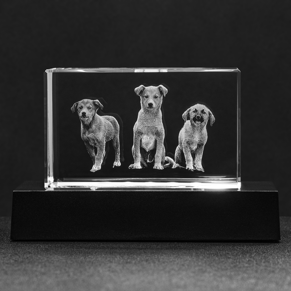 Crystal Photo Block 3D Laser Engraving, Personalized Glass Etched Picture Hologram Print Gift, Mom Dad Grandpa Pet Dog Baby Wedding Memories - Starcove Design