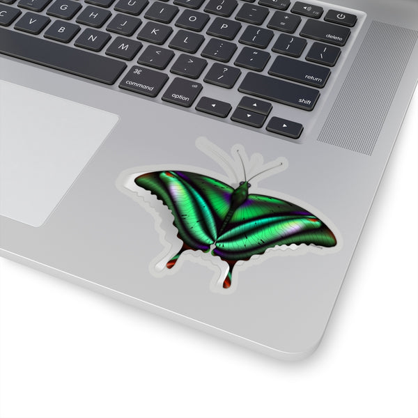 3d Butterfly Art Sticker, Girls Wall Decal Decor Decoration Gift Laptop Decal Vinyl Cute Waterbottle Tumbler Car Aesthetic Label Mural - Starcove Design