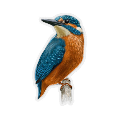 Kingfisher Bird Sticker, Nature Animals Tropical Laptop Decal Vinyl Cute Waterbottle Tumbler Car Bumper Aesthetic Die Cut Wall Mural