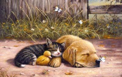 Sleepy Days 100pc Jigsaw Puzzle | Kevin Walsh