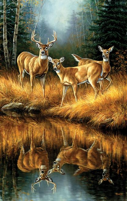 Whitetail Reflections 550pc Jigsaw Puzzle | Rosemary Millette