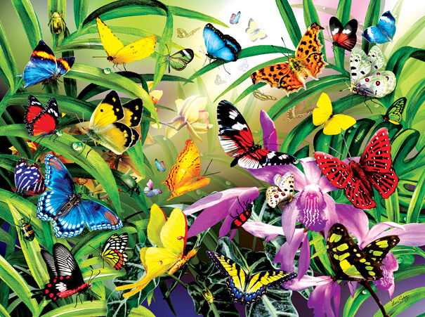 Tropical Butterflies